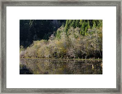 Reflections On Marshall Pond Framed Print