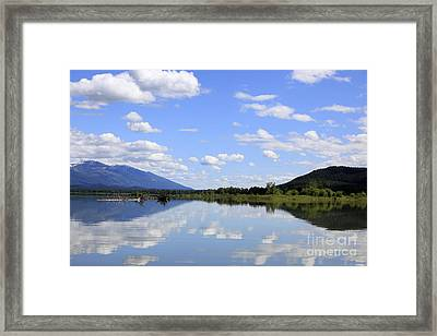 Framed Print featuring the photograph Reflections On Swan Lake by Nina Prommer