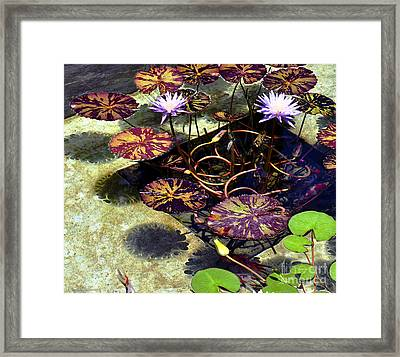 Framed Print featuring the photograph Reflections On Underwater Life by Clayton Bruster