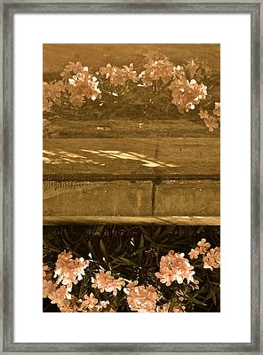 Reflections Framed Print by Rachel Rodgers