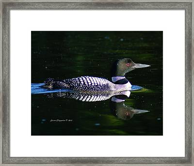 Framed Print featuring the photograph Reflections by Steven Clipperton