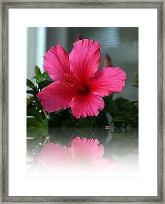 Reflective 1 Framed Print