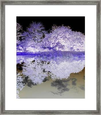Reflective Abstracts Framed Print by Kim Galluzzo Wozniak