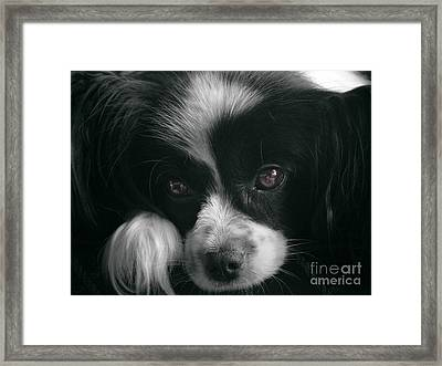 Reflective Framed Print