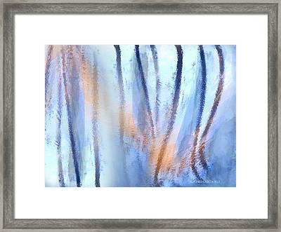 Reflejos Framed Print