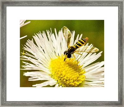 Refueling  Framed Print by Dean Bennett