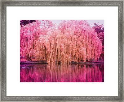 Regeant's Canal Framed Print by Andreia Gomes