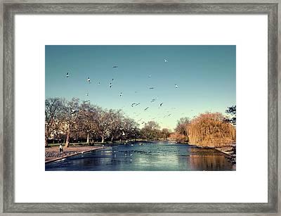 Regent's Park Framed Print by DarkRigel