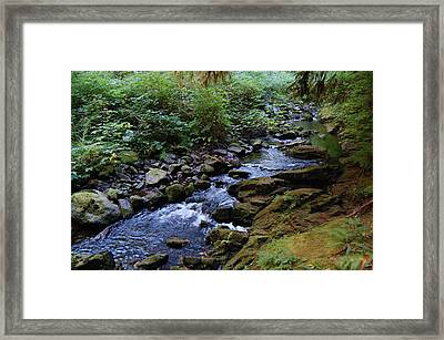 Rejuvenation Framed Print