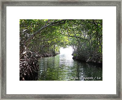 Relax Paradaise Framed Print by Frances G Aponte