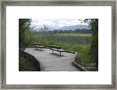 Framed Print featuring the photograph Relaxation by Bill Thomson