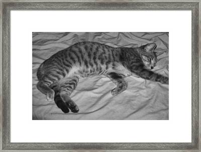 Relaxed Framed Print by Juliana  Blessington