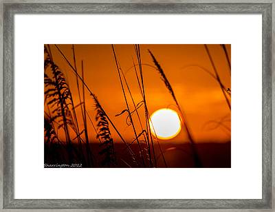 Relaxed Framed Print