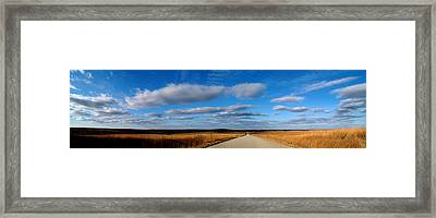 Relaxing Drive Framed Print