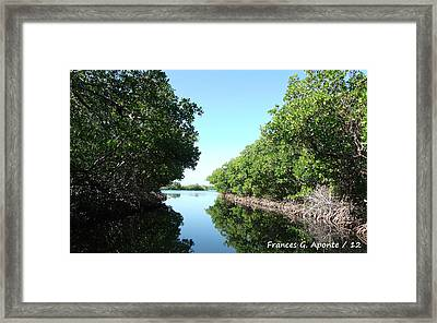 Relaxing Paradise Framed Print by Frances G Aponte