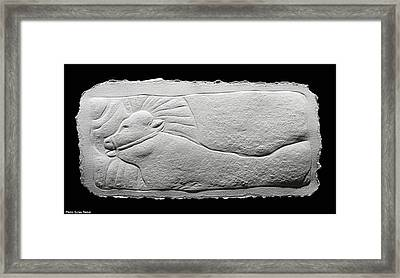 Relief Bull Framed Print by Suhas Tavkar