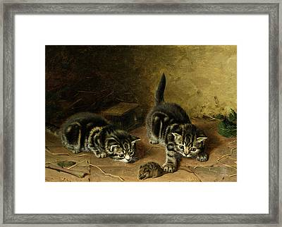 Reluctant Playmate Framed Print by Horatio Henry Couldery
