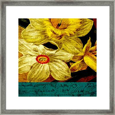 Remembering Framed Print by Bonnie Bruno