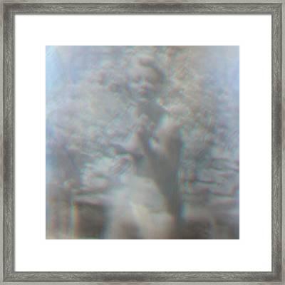 Reminiscent 03 Framed Print by Li   van Saathoff