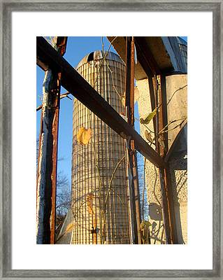 Remnant  Framed Print by Tammy Cantrell