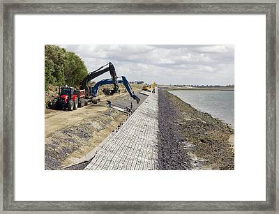 Renewing Shore Defences, Netherlands Framed Print by Colin Cuthbert