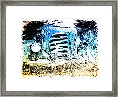 Reo Framed Print by Andre Faubert