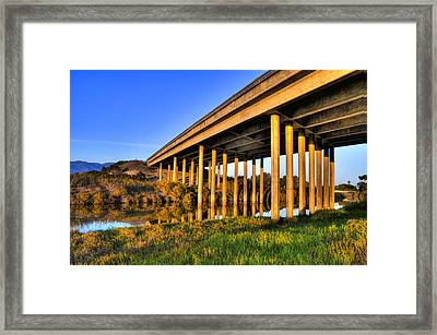 Framed Print featuring the photograph Repetition by Marta Cavazos-Hernandez