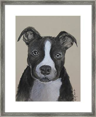 Rescue Me  Framed Print by Michelle Wolff