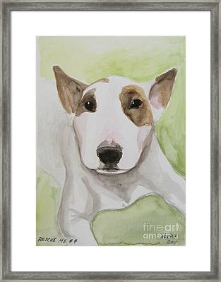 Rescue Me Nr. 4 Framed Print by Jindra Noewi