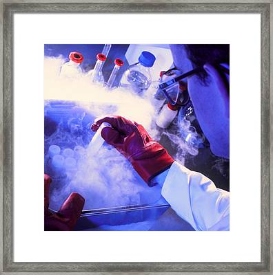Researcher Removing Sample Tube From Cryostorage Framed Print by Tek Image