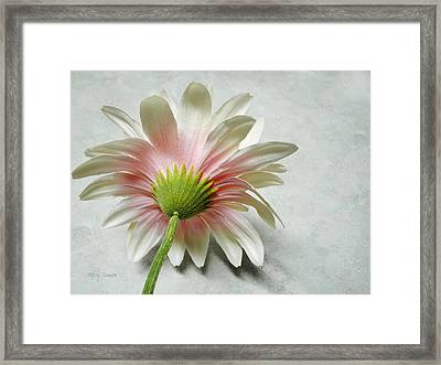 Reserved Framed Print by Mary Timman