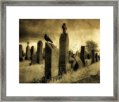 Rest Blackbird Framed Print
