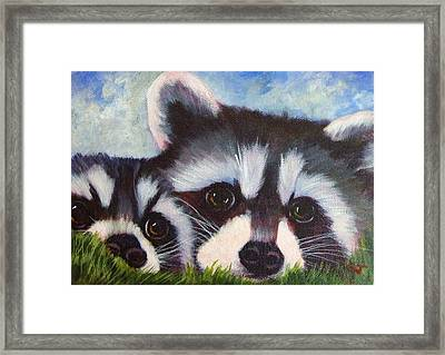 Resting And Watching Framed Print by Ginger Jamerson