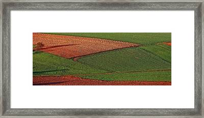 Resting Fields 1 Framed Print