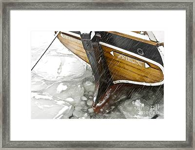 Resting In Ice Framed Print by Heiko Koehrer-Wagner