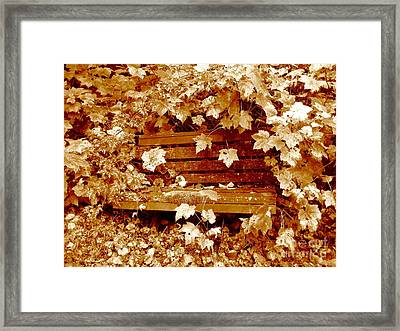 Framed Print featuring the photograph Resting Too by Kathy Bassett