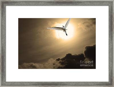 Return To Eternity . Gold Cut Framed Print by Wingsdomain Art and Photography