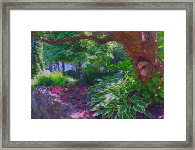 Return To The Secret Garden Framed Print