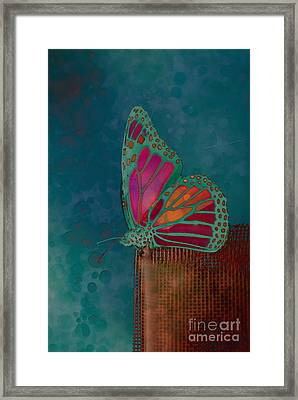 Reve De Papillon - S04bt02 Framed Print by Variance Collections