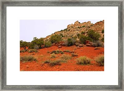 Reveal Framed Print by Donna Duckworth