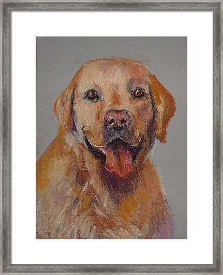 Framed Print featuring the painting Rex  by Carol Berning