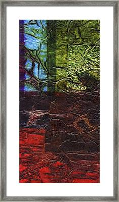 Rhapsody Of Colors 56 Framed Print