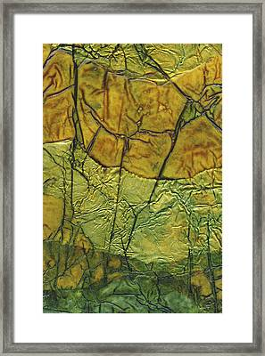 Rhapsody Of Colors 71 Framed Print by Elisabeth Witte