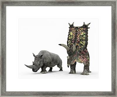 Rhino And Pentaceratops Dinosaur Framed Print by Walter Myers