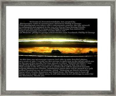 Rhino Sunset  Framed Print by Phillip H George
