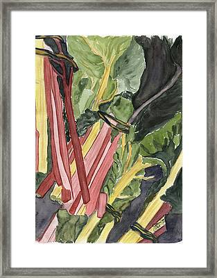 Framed Print featuring the painting Rhubarb Study by Joan Zepf