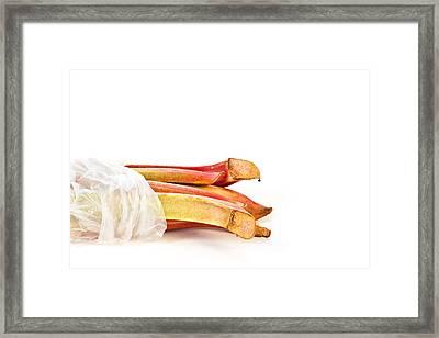 Rhubarb Framed Print by Tom Gowanlock