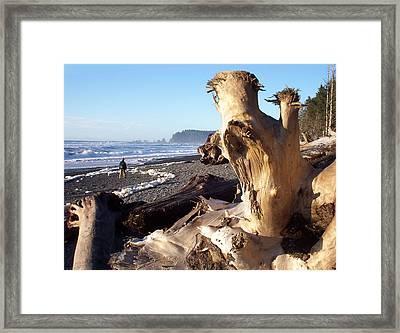 Rialto Hike Framed Print by Christine Burdine