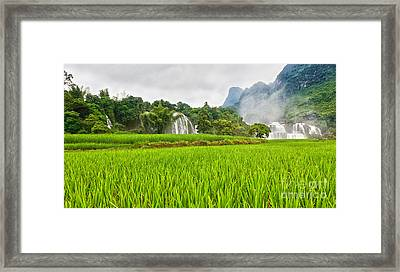 Rice Field And Waterfall Framed Print