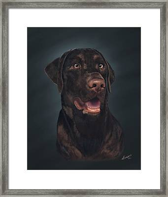 Rico Framed Print by Lisa Binion